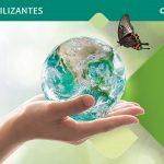 Agricultura 2.0: producir con menos fertilizantes