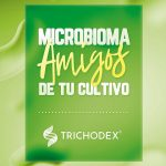 Microbioma: amigos de tu cultivo