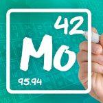 La importancia del molibdeno y el cobalto en la planta